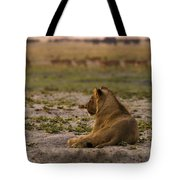 Lion Lazy Tote Bag