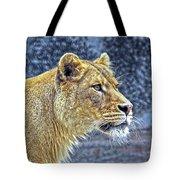 Lion Stare Tote Bag