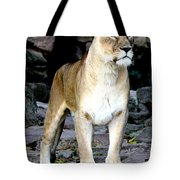 Lioness At Attention Tote Bag