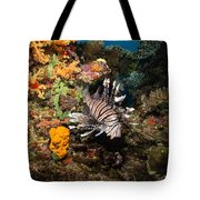 Lionfish, Fiji Tote Bag