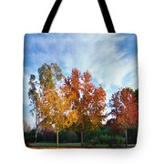 Liquid Amber Trees Tote Bag