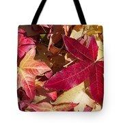 Liquidambar Autumn Tote Bag