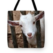 Little Billy Tote Bag