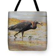 Little Blue Heron In Swamp Tote Bag