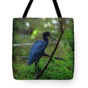 Little Blue Heron Portrait Tote Bag