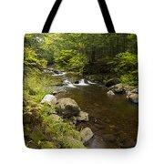 Little Carp River Falls 5 Tote Bag