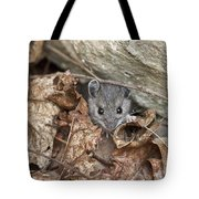 Little Creatures Need Love Too Tote Bag