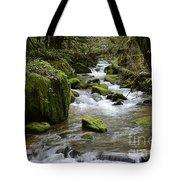 Little Creek 2 Tote Bag