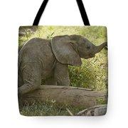 Little Cutie Tote Bag