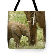 Little Ellie Tote Bag