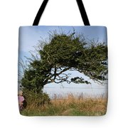 Little Girl And Wind-blown Tree Tote Bag