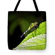 Little Green Wings Two Tote Bag