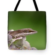 Little Komodo Tote Bag