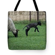 Little Lamb Playing Tote Bag