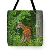 Little One Tote Bag by Karol Livote