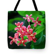 Little Pink Chinese Honeysuckle Flowers  Tote Bag
