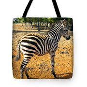 Little Stripes Tote Bag