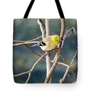 Little Yellow Bird Yellow Finch Tote Bag