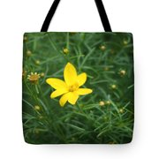 Littlest Daisies Tote Bag