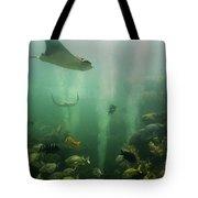 Live Coral Reef Tote Bag