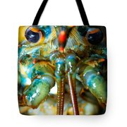 Live New England American Lobsters From Cape Cod Tote Bag