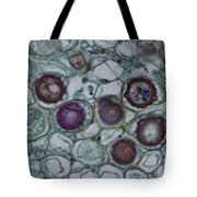 Lm Of Cystopus Albicans Tote Bag