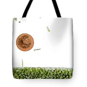 Lm Of Entamoeba Cyst Tote Bag