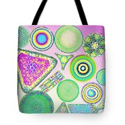 Lm Of Fossilized Diatoms Tote Bag