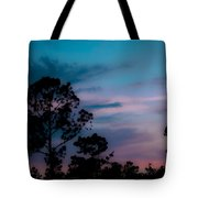 Loblelly Pine Silhouette Tote Bag by DigiArt Diaries by Vicky B Fuller