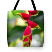 Lobster Claws Tote Bag
