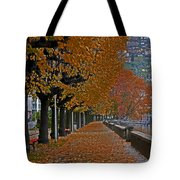 Locarno In Autumn Tote Bag