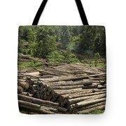Logs In Logging Area, Danum Valley Tote Bag