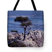 Lone Cypress By The Sea Tote Bag