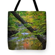 Lone Duck Tote Bag