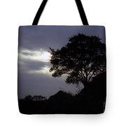 Lone Oak 1 Tote Bag