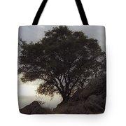 Lone Oak 2 Tote Bag