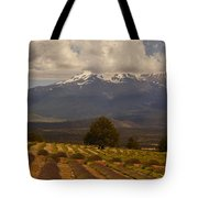 Lone Tree And Lavender Fields Tote Bag