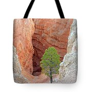 Lone Tree At Bryce National Park Tote Bag