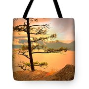 Lone Tree At Ellison Park Tote Bag