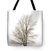Lone Tree In The Mist Tote Bag