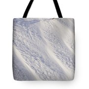 Lone Tree On Mount Hood In Winter Mount Tote Bag by Craig Tuttle