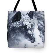 Lone Wolf In Snow Tote Bag
