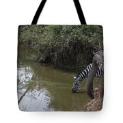 Lone Zebra At The Drinking Hole Tote Bag