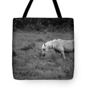 Lonesome Pony Tote Bag