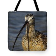 Long-billed Curlew Portrait Tote Bag