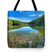 Long Branch Marsh Tote Bag by Adam Jewell