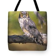 Long Eared Owl On Branch Tote Bag