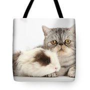 Long-haired Guinea Pig And Silver Tabby Tote Bag