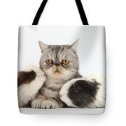 Long-haired Guinea Pigs And Silver Tote Bag