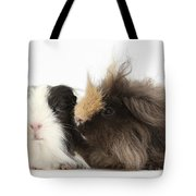 Long-haired Guinea Pigs Tote Bag